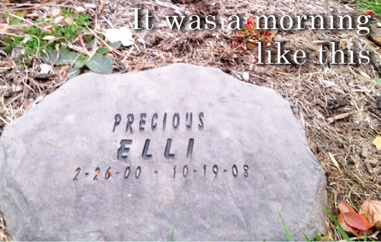 it was a morning like this (Elli's stone)