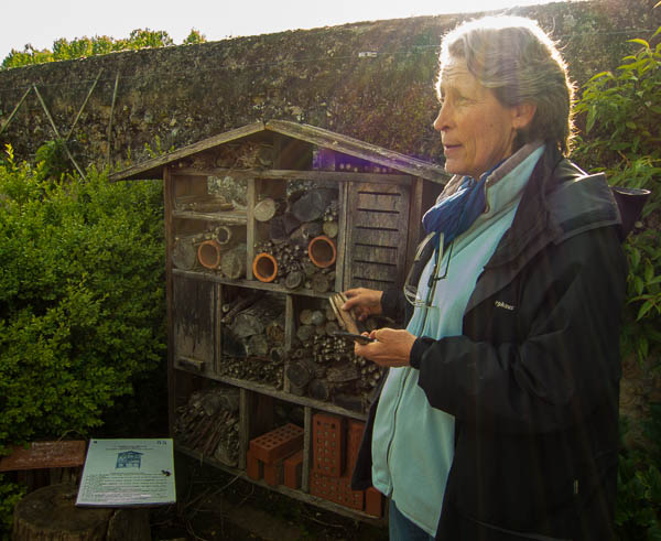 Photo of the insect house in the potager at Chateau de Valmer