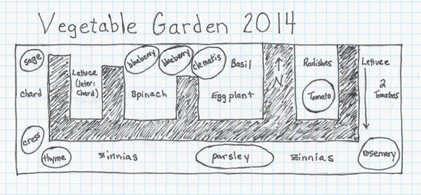 Vegetable Garden Layout, 2014