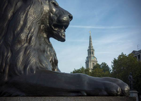 Bells. I listened to bells every Sunday morning, plus a rehearsal on a Tuesday evening. This photo of a Trafalgar Square lion in front of the St. Martin-in-the-Fields steeple was taken while I was listening to the bells.