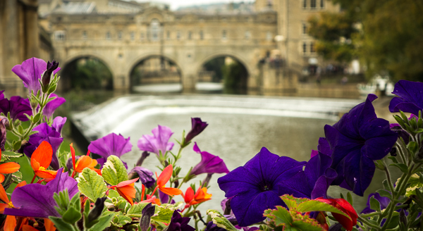 Pulteney Bridge from the Parade Gardens