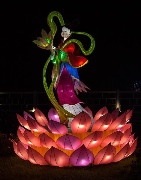 Lotus Girl lantern