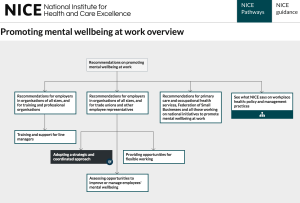 NICE Guidelines for Promoting Mental Wellbeing at Work flowchart