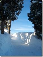 снежок4