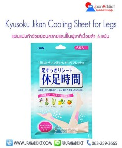 Kyusoku-Jikan-Cooling-Sheet-for-Legs-6sheets