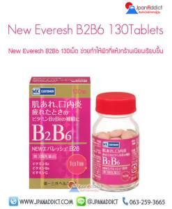 New Everesh B2B6