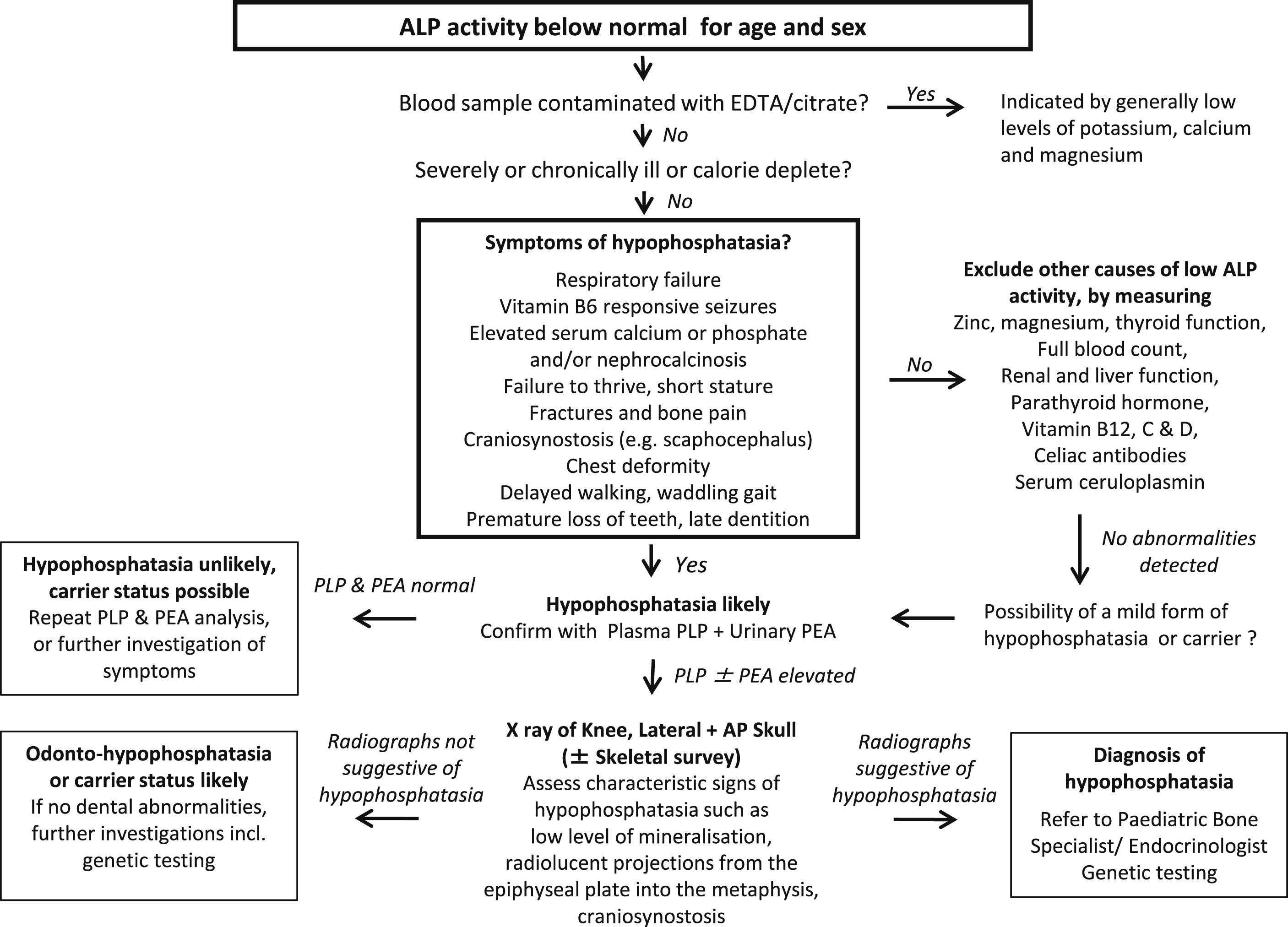 A Diagnostic Algorithm For Children With Low Alkaline Phosphatase Activities Lessons Learned