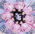 Sakura no Ki ni Narou (桜の木になろう) - AKB48
