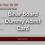 Bihar Board dummy Admit Card