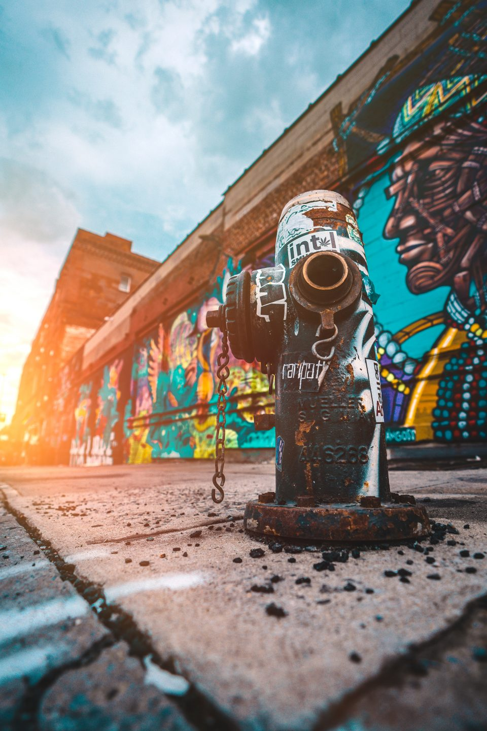 A photo of some beautiful street art, taken from the ground view - there's a water hydrant and it's grafiti'd too.