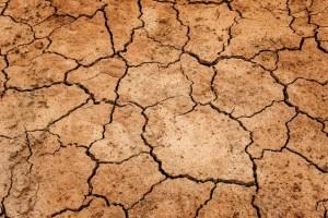 Dry earth.