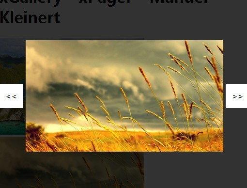 Simple Responsive Image Lightbox Gallery Plugin - xGallery ...