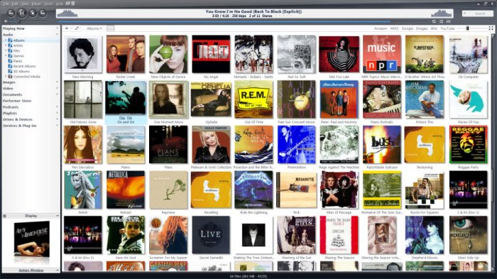 J.River Media Center 24.0.41 Free Download