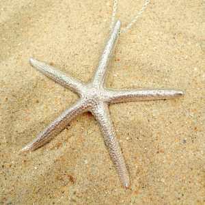collier Starfish en argent 925