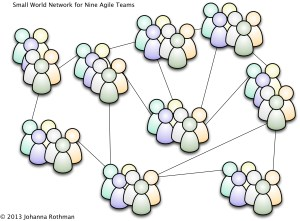 Possible Small World Network for Nine Agile Teams