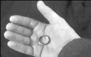 L'Anello in mano a Peter Lorre (Gollum)