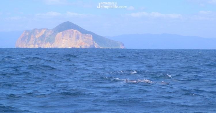 宜蘭快樂出航!環繞龜山島,賞龜山八景、看海豚跳躍可愛舞姿