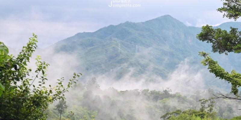 這夏正涼!全台「12處國家森林遊樂區」免費入園1次,走進山裡大口呼吸