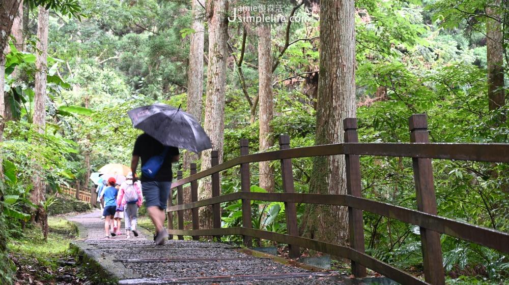 兒童節12歲以下兒童專屬,與大人同遊的幸福時光 東眼山國家森林遊樂區