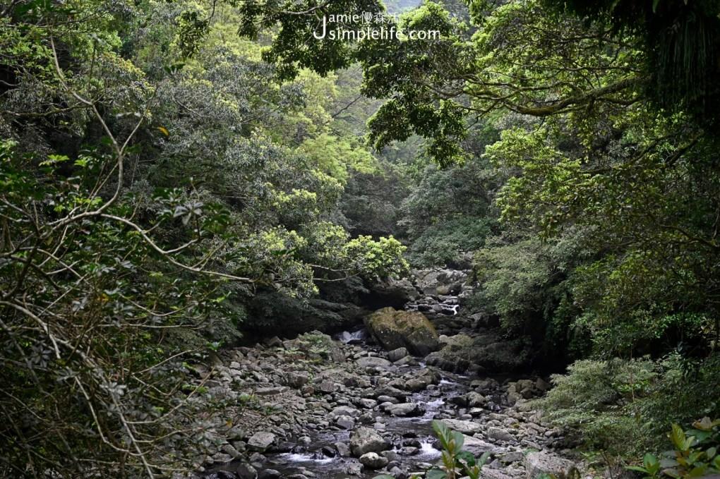 新北三峽「滿月圓國家森林遊樂區」友善親子步道與自然生態