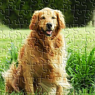 Resultado de imagen para imagenes rompecabezas