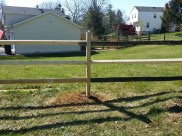 After Fence Repair in North Potomac