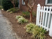 After Clean Up and Mulching in Silver Spring Maryland