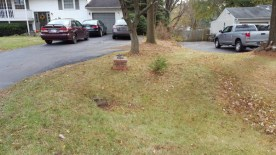 After Leaf Removal, Clean Up by JSV Lawn Care Service, JSV Lawns, JSV Lawns of MD. Lawn Care, Landscaping, Clean Up, Germantown, Montgomery County, Maryland