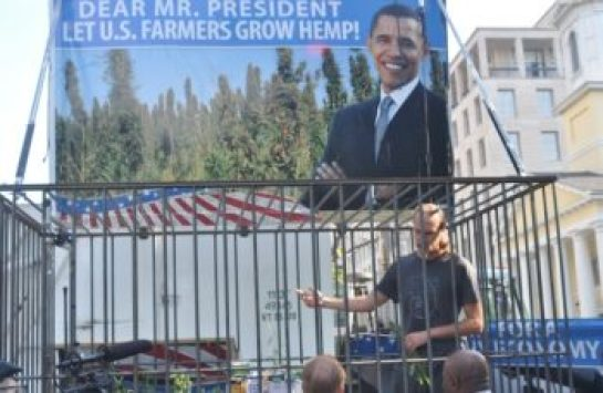David Bronner of Dr. Bronner's Magic Soaps harvests industrial hemp in front of the White House. (Courtesy of Dr. Bronner's)