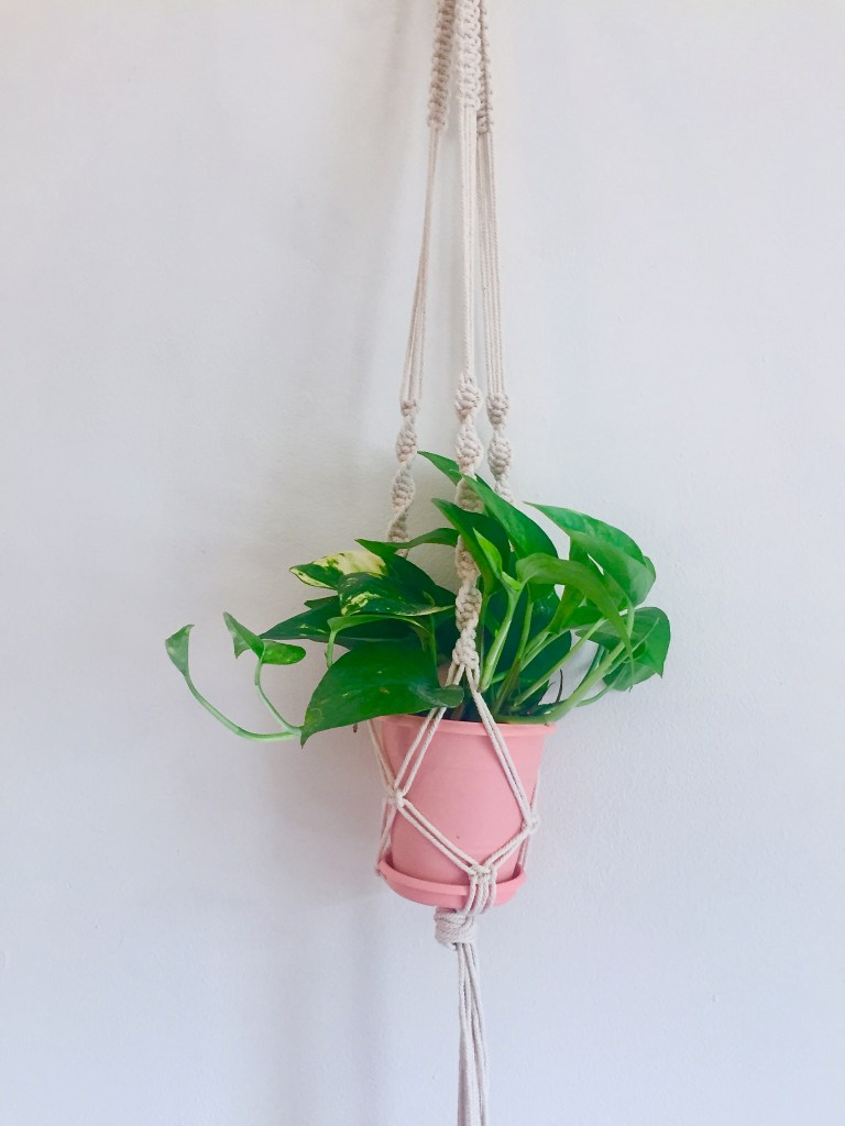 Diy Macrame Plant Hanger J Tay And Little A