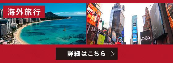 海外はこちら フライトが自由に選べる! 最大30日間まで滞在可能! JTB厳選のホテルから自由に選べる! トラブルの際は24時間日本語で電話対応!