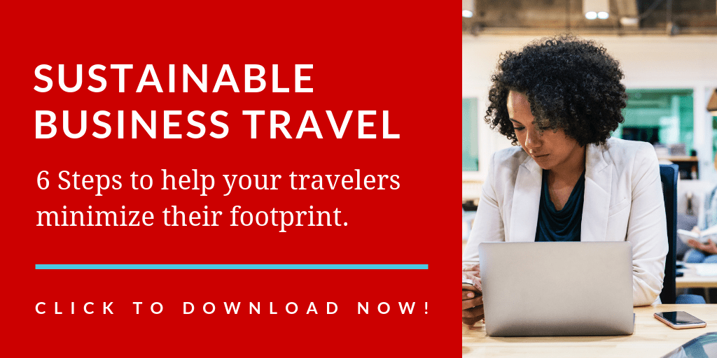 Sustainable Business Travel Download Link