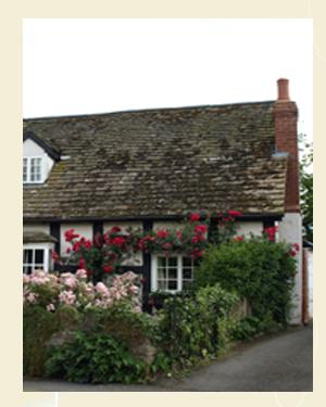 Rose covered cottage, Eardisley Closeup - Ref L11c