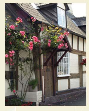 Fox Pie Cottage, Eardisley Closeup - Ref L12