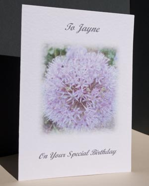 Allium - Special Occasion Birthday Card Angle - Ref P121