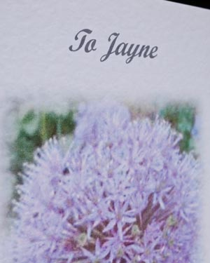 Allium - Special Occasion Birthday Card Closeup - Ref P121