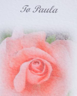 Peach Rose - Birthday Card Close - Ref P133