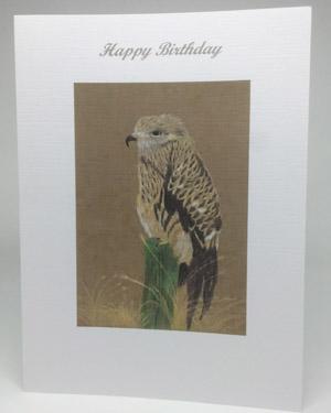 Bird of Prey Artwork Card - Ref A210