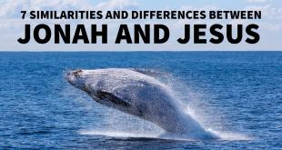 7 similarities and differences between Jonah and Jesus