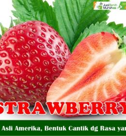 Buah Strawberry segar