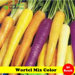 Benih Wortel Mix Color (Maica Leaf)