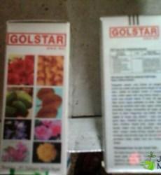 Pupuk Gold star