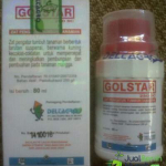 Pupuk Gold Star (80 ml)