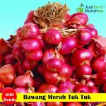 Benih Bawang Merah Tuk Tuk (Cap Panah Merah)