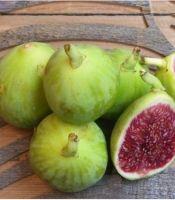 buah-tin-green-yordan