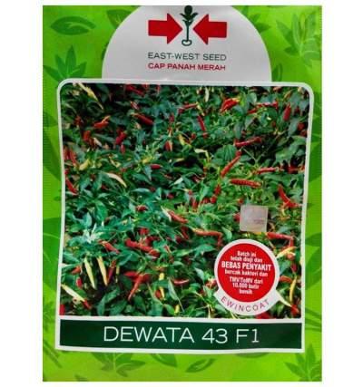 Benih Cabe DEWATA 43 F1_Panah Merah 1