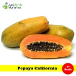 Benih Pepaya California (Maica Leaf)