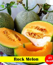 Rock Melon Maica Leaf