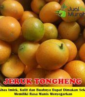 Jeruk Tongheng