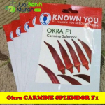 Benih Okra Carmine Splendor F1 (Known-You Seed)
